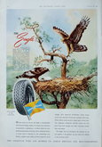 Advert. Goodyear Tyres