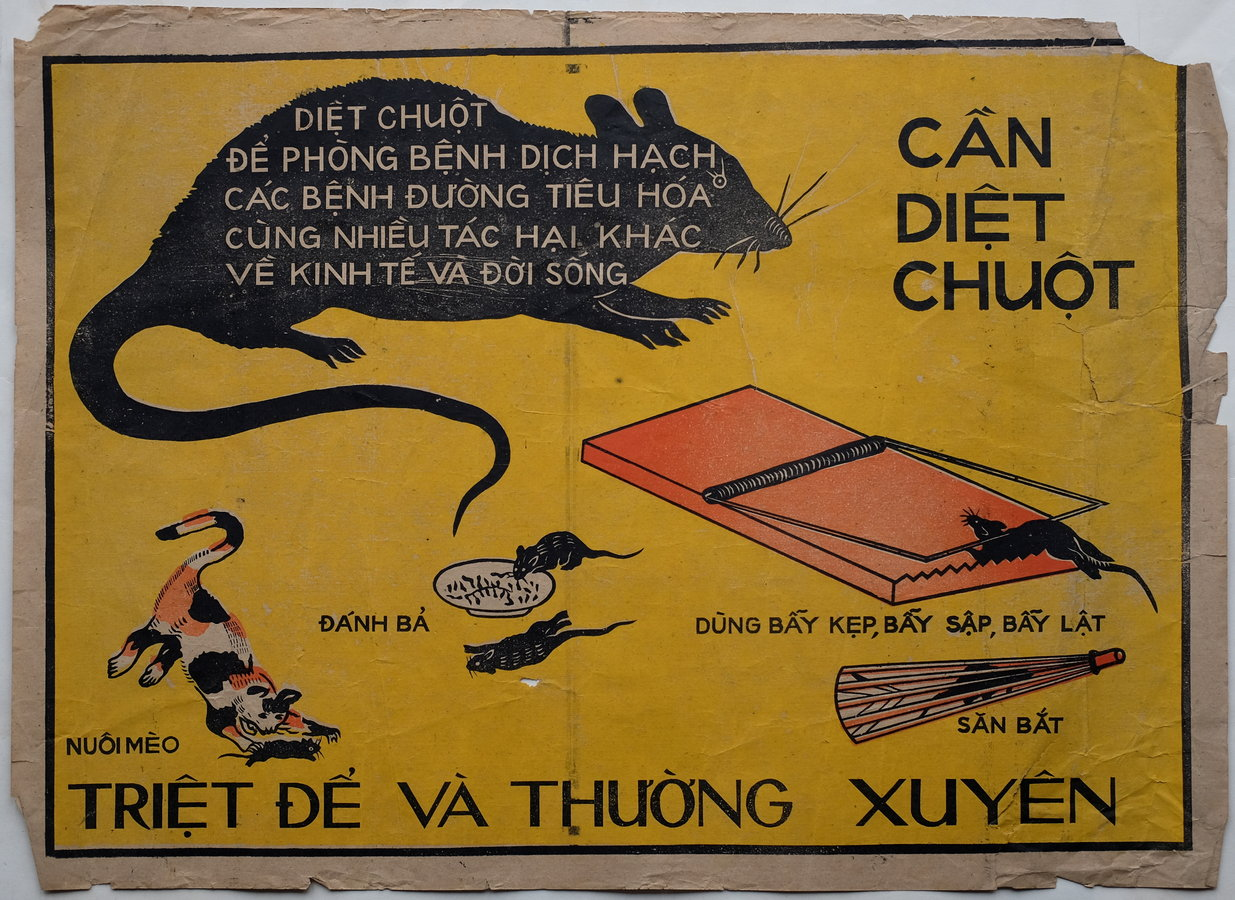 Vietnamese Rodent Poster