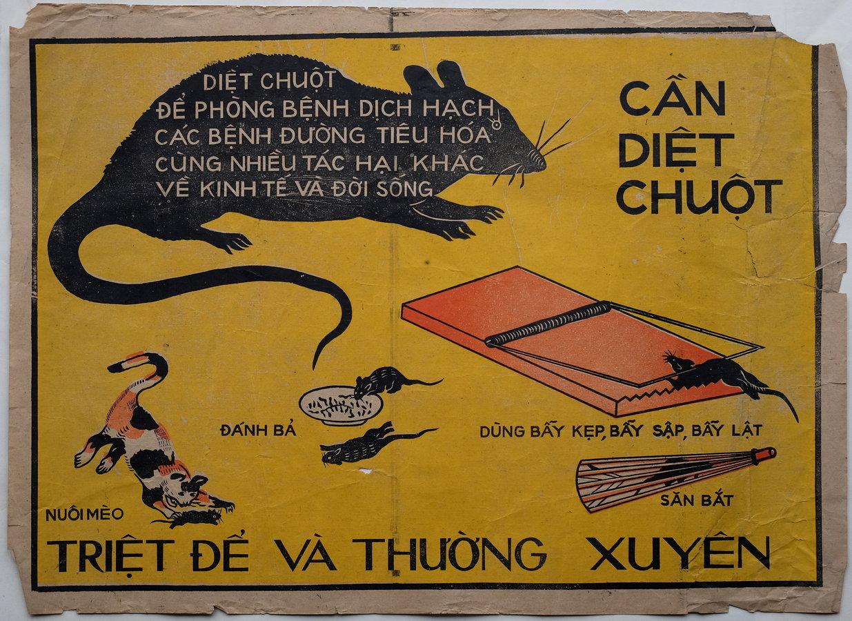 Vietnamese Rodent Poster