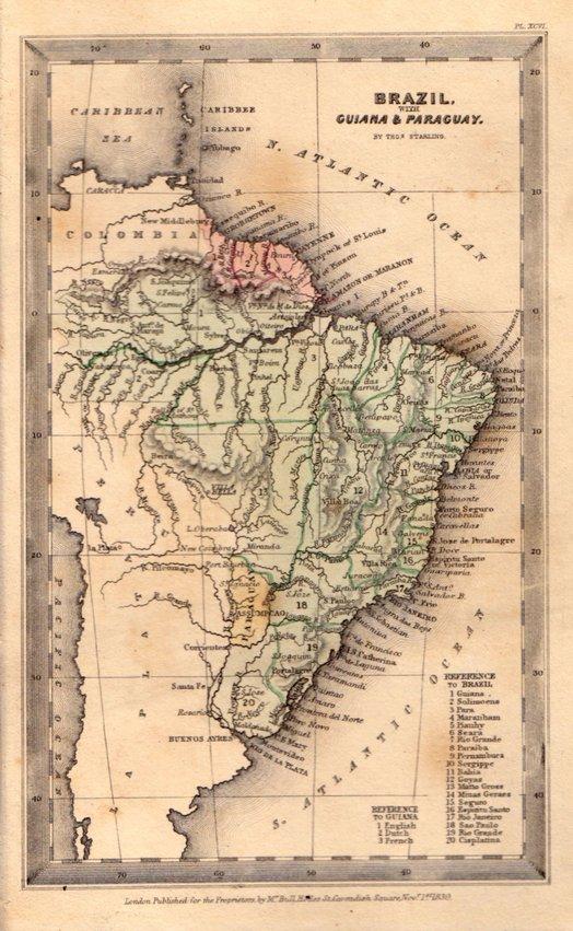 Brazil by Starling