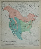 North America. Mammals.