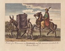Barbary Horseman