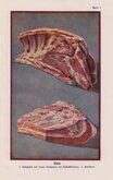 Butchery Beef