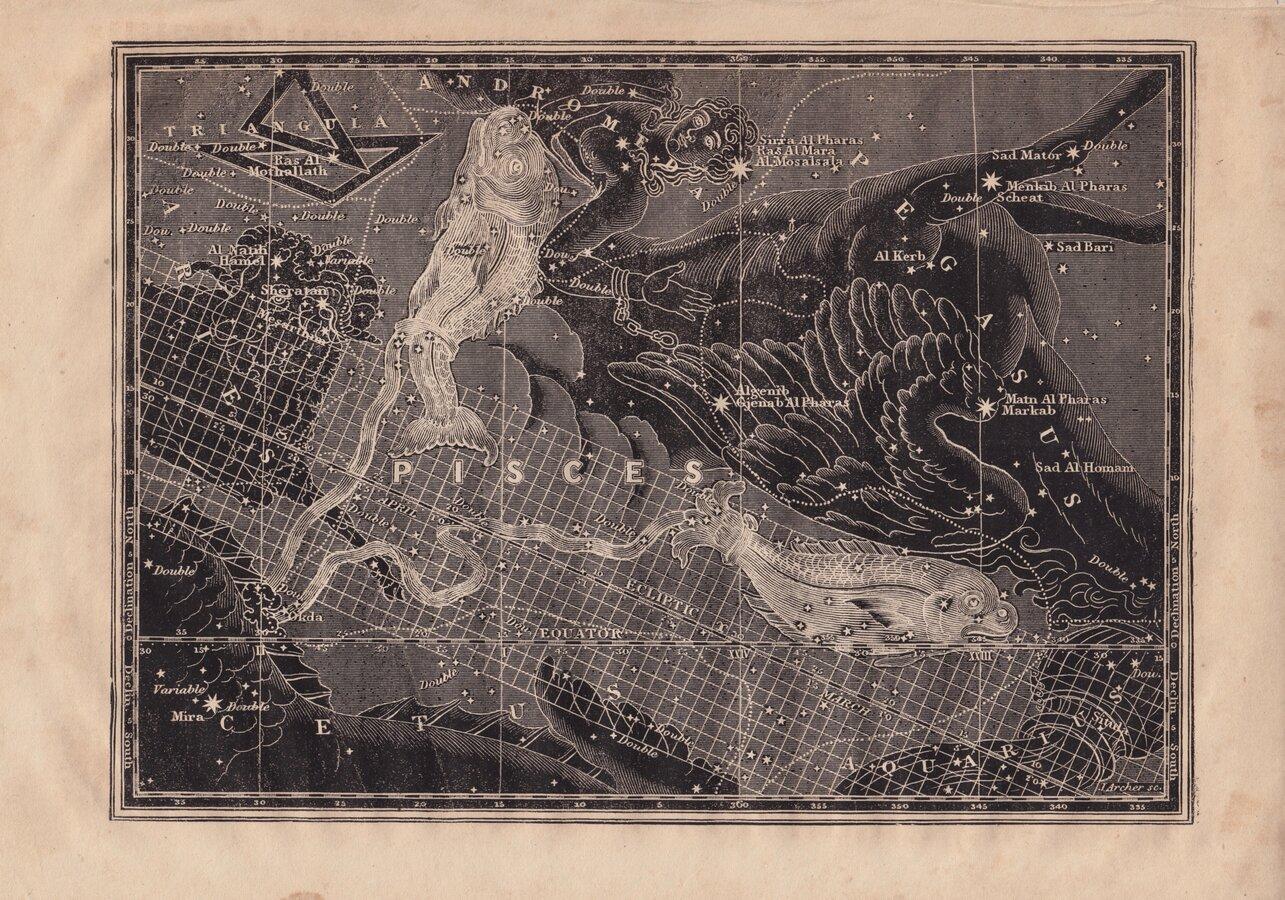 Star Chart Pisces